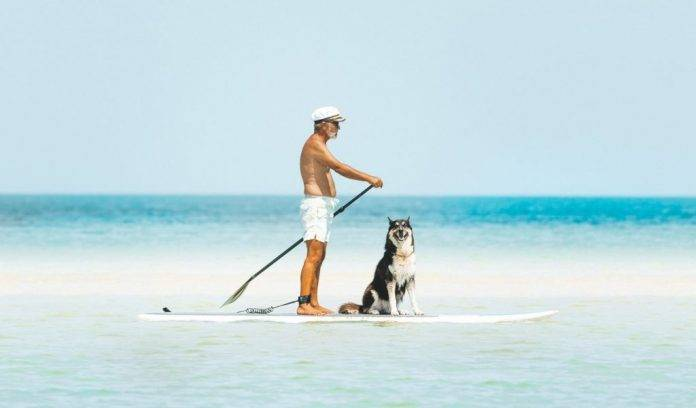 Bluefin Stand up paddle board Review